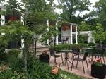 Terrace / Patio in the garden